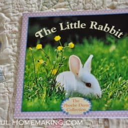The Little Rabbit {Before Five in a Row}