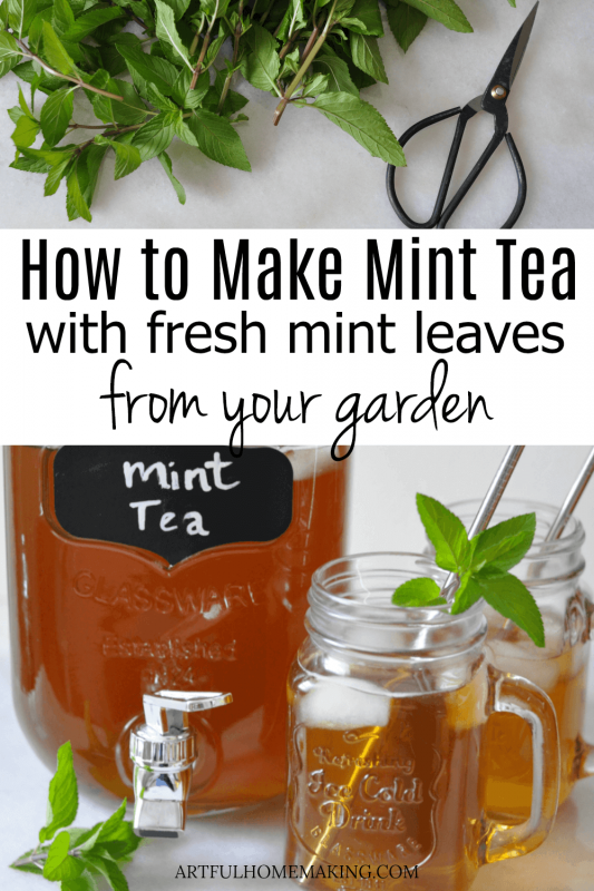 How to Make Mint Tea with Fresh Mint