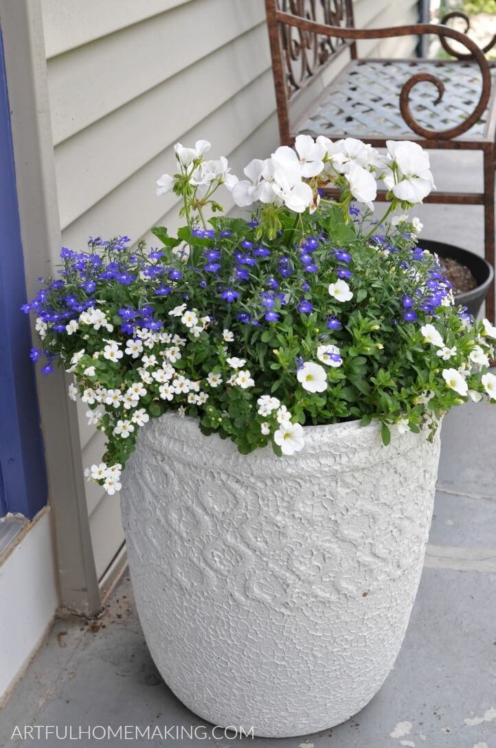 potted front porch planter
