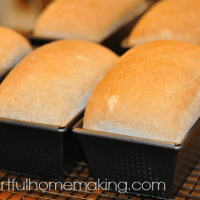 whole wheat bread recipe loaves