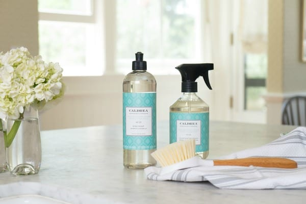 summer cleaning free products