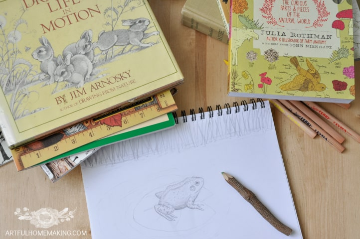 charlotte mason nature journaling ideas