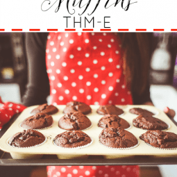 Chocolate Muffins {Trim Healthy Mama-E}