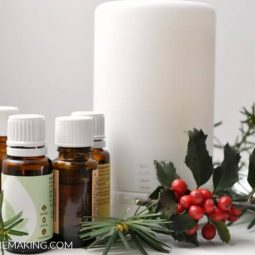 19 Winter Essential Oil Diffuser Blends