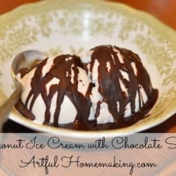 Coconut Ice Cream and Chocolate Sauce