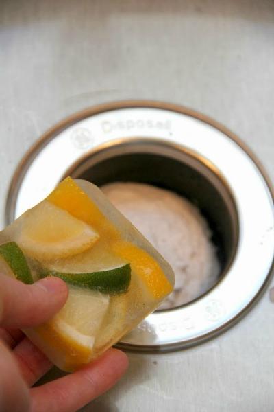 diy garbage disposal deodorizer