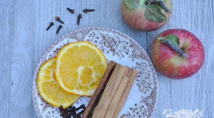 Fall Simmering Potpourri Recipe
