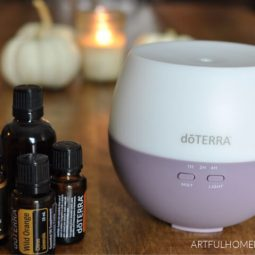 10 Best Fall Essential Oil Diffuser Blends