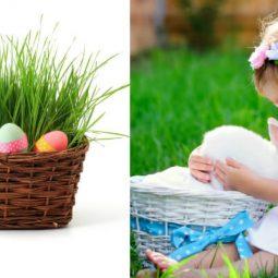 Natural Easter Basket Ideas for Kids