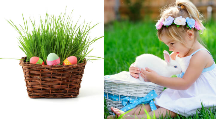 easter basket girl with rabbit