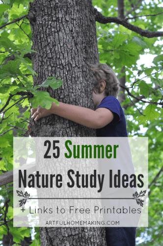 25 summer nature study ideas