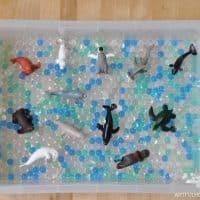 Simple and Fun Ocean Themed Sensory Bin