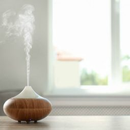 13 Spring Essential Oil Diffuser Blends